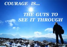 courage quote, the guts to see it through