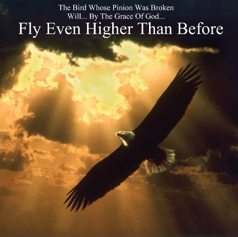 the bird whose pinion was broken will fly higher, overcoming quote
