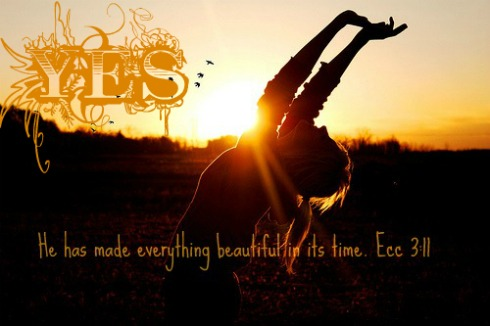 Ecc 3:11, bible quote, he has made everything beautiful in it's time