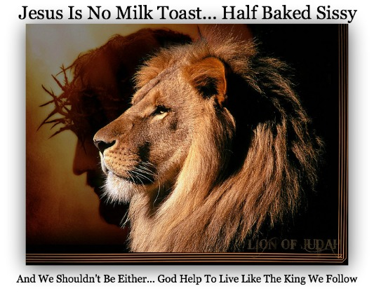 Jesus is not Milk Toast