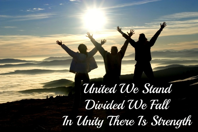 united we stand divided we fall, in unity there is strength