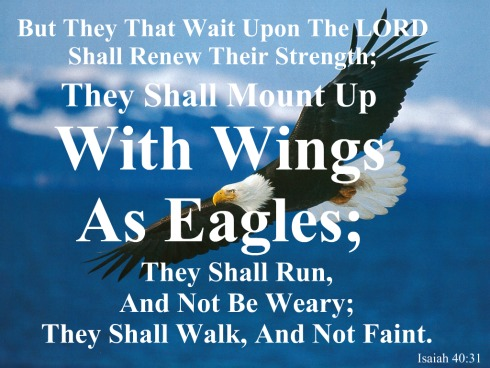 isaiah 40 31, isaiah quote, mount up with wings, fly like an eagle