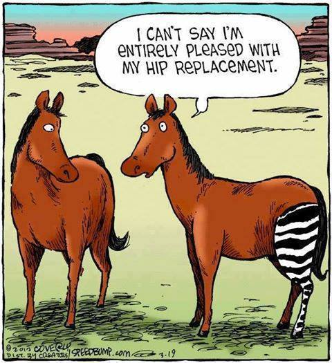 Funny Hip Replacement, funny christian Picture