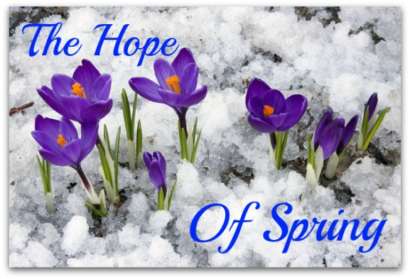 hope of spring quote, new start new beginning