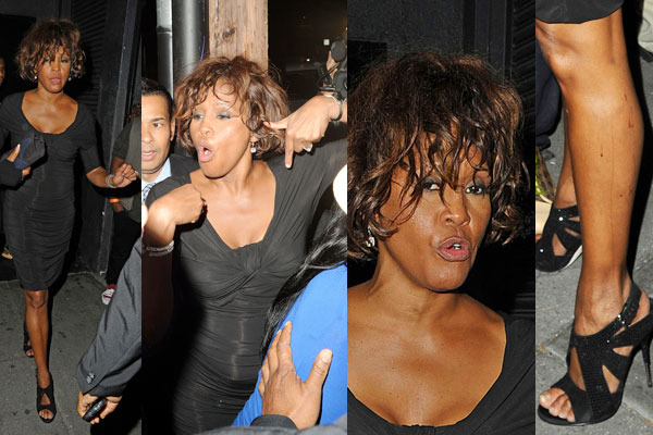 Whitney Houston, last days, suicide