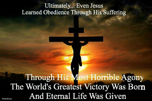 Hebrews 5:8, JESUS learned obedience through the things he suffered, quote