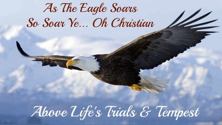 rise above, on eagles wings