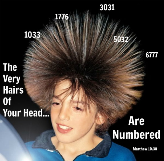 The hairs of your head are numbered,  Matthew 10:30