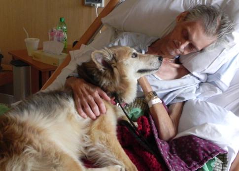 dying man with dog, last breath