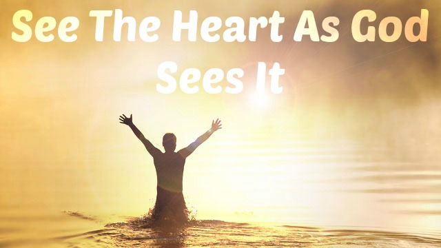 See The Heart