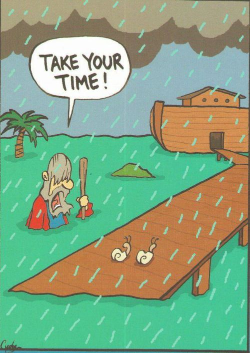 Funny christian Picture