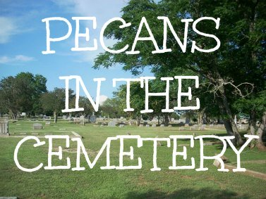 pecans in the cemetery, funny christian story