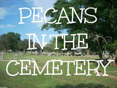 pecans in the cemetery joke