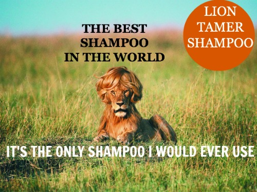 funny shampoo commercial, best shampoo, lion tamer