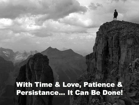 persistance quote, christian quote, patience quote, can do quote