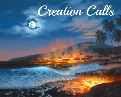 Island being formed, creation vs evolution, in the beginning