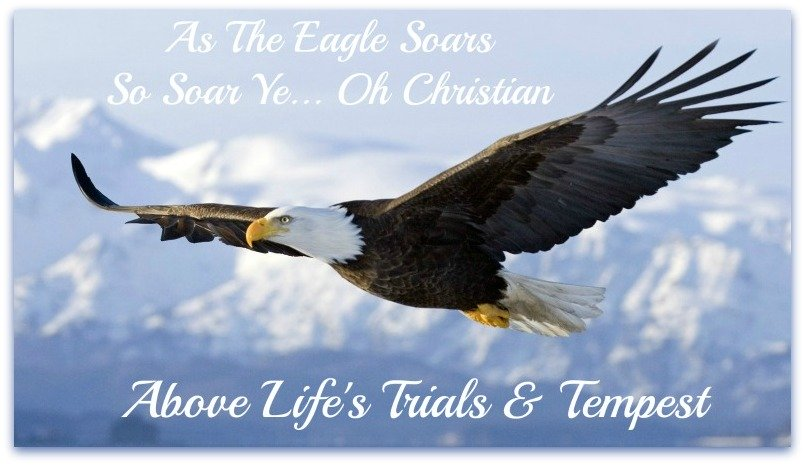 eagle quote, rise above life's troubles, soar