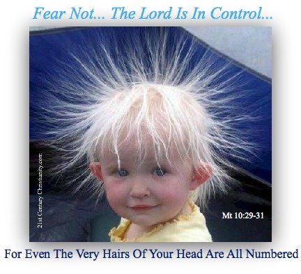Mt 10, hairs of your head are numbered