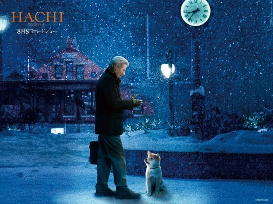 hachiko puppy, richard gere, movie, loyal dog
