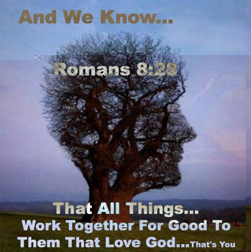 Romans 8:28, All thing work together for our good
