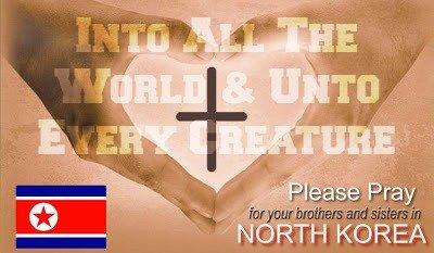 North Korea Missions