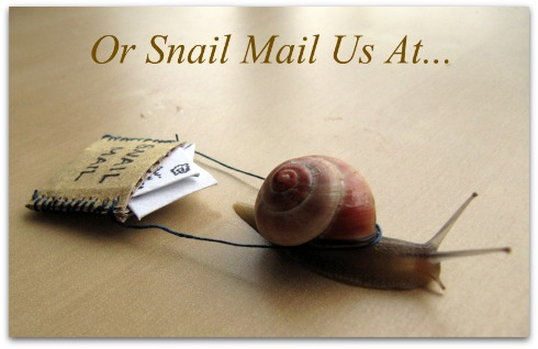 snail mail, letter, write us